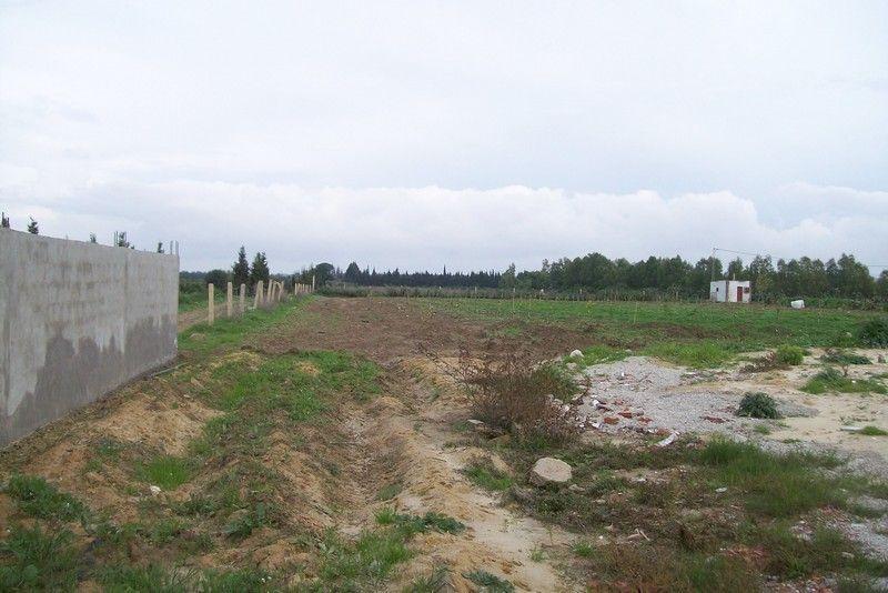 Terrain agricole bouargoub proche de march vt 297 for Agrandissement maison terrain agricole