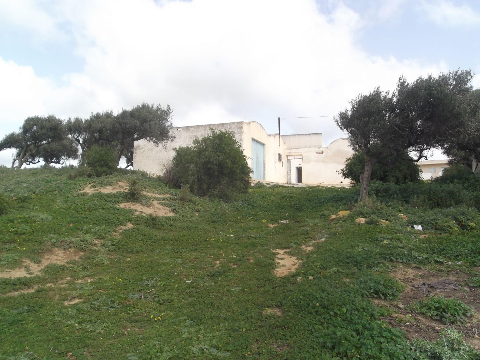 Maison campagne plus terrain 7500m wed elkhatf vente for Terrain plus maison