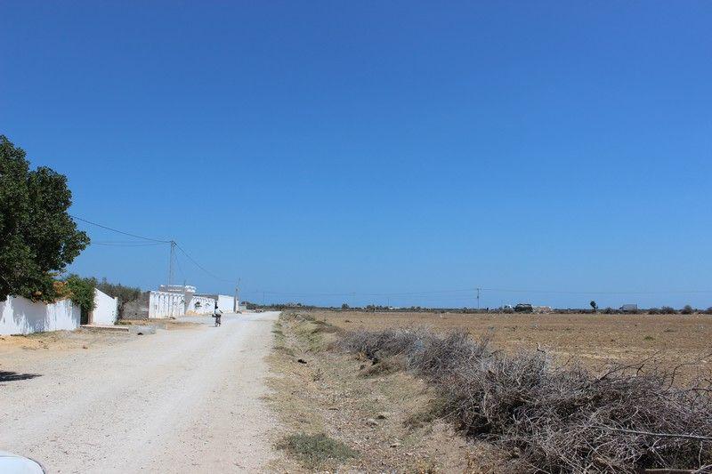 Un terrain agricole sur la route principale de bouficha for Container sur terrain agricole