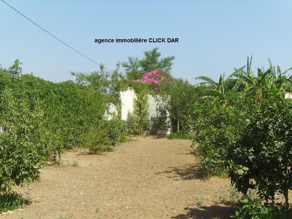 Une splendide villa avec vue sur la montagne hmt vente for Jardin 2000 tunisie