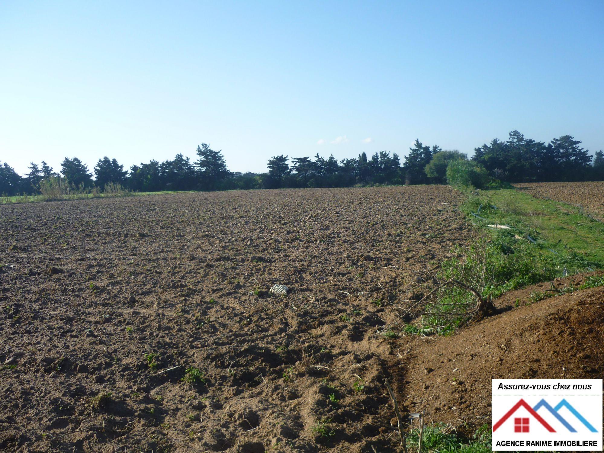 Terrain agricole de 5 hectares sakwi avec titre bleu for Agrandissement maison terrain agricole