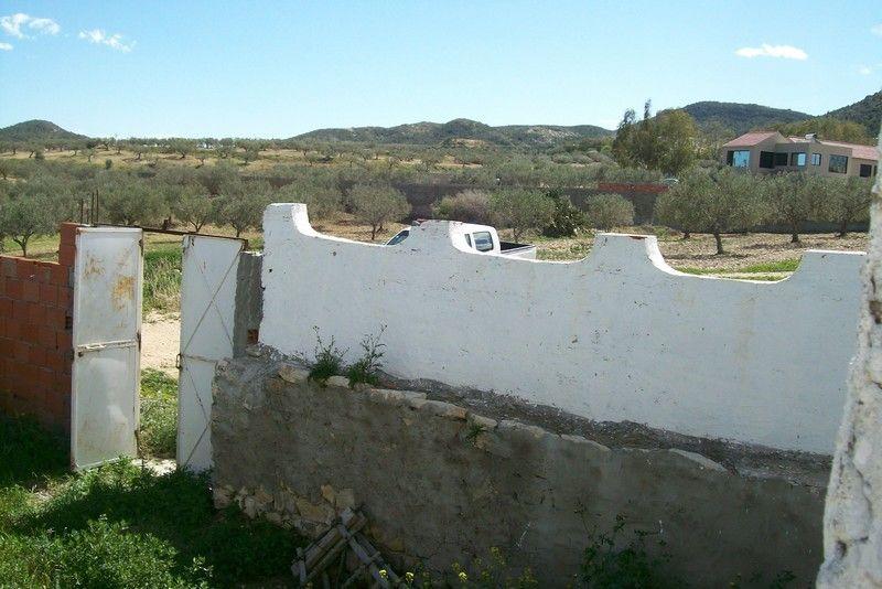 Henchir jradou avec vielle maison arabe vente ferme for Agence immobiliere zaghouan