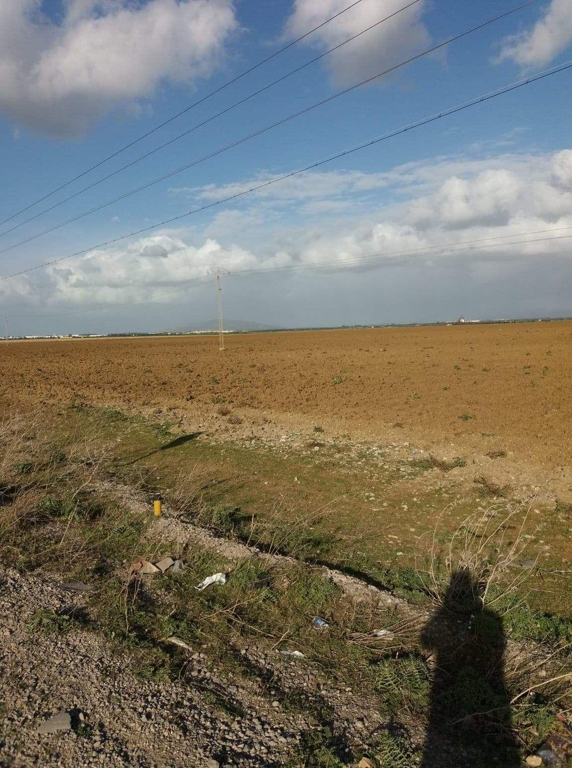 A solimen nabeul terrain agricole de 23 hectares l'eau et l'élec