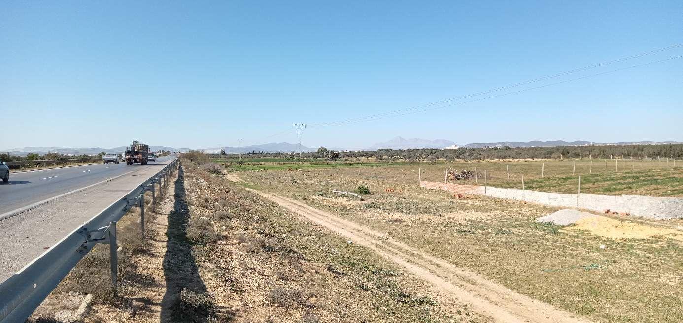 Sidi saaid bouficha terrain agricole de 1hec et 8000m