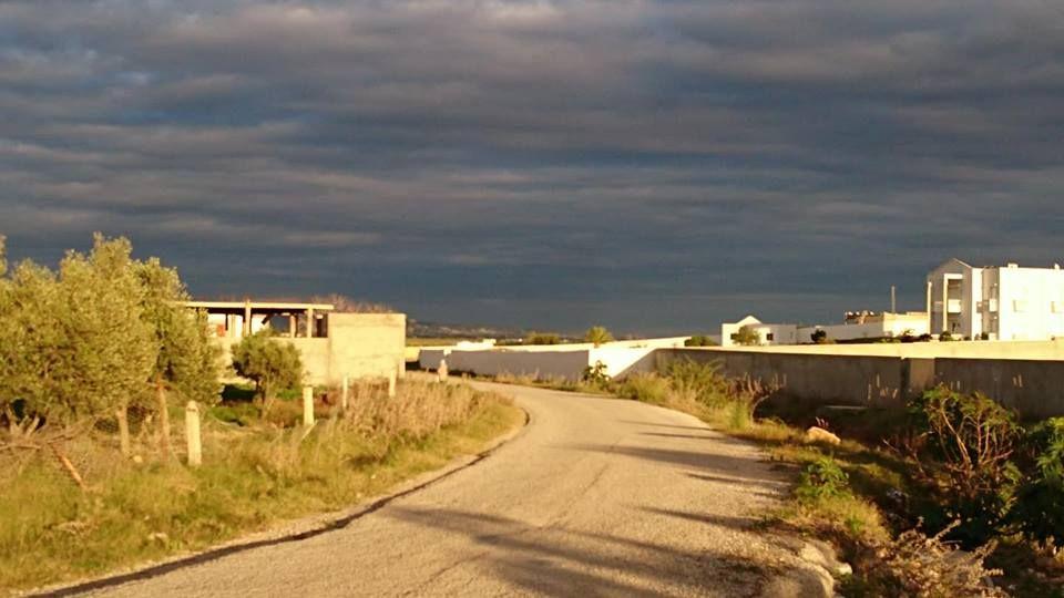 Terrain à la compagne de hammamet sud dans un endroit calme