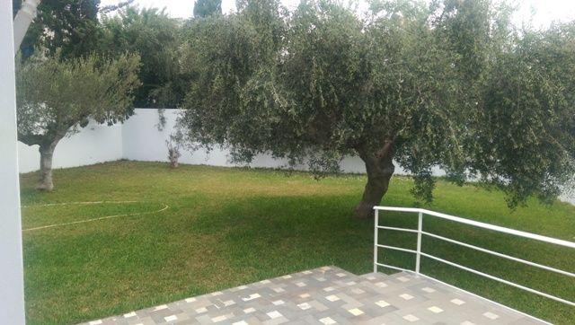 Villa molkaréf:  location annuelle