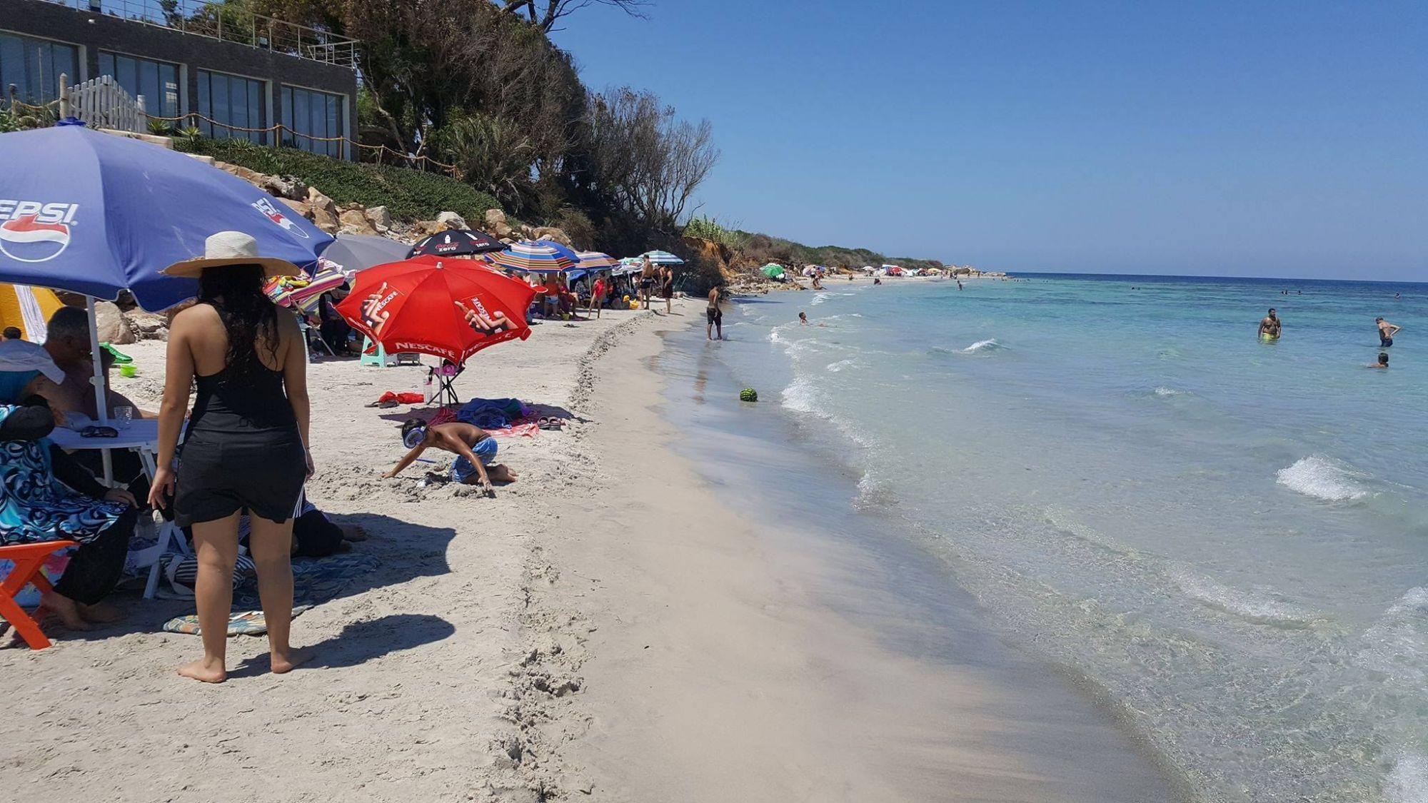 Un terrain à vendre près de la plage