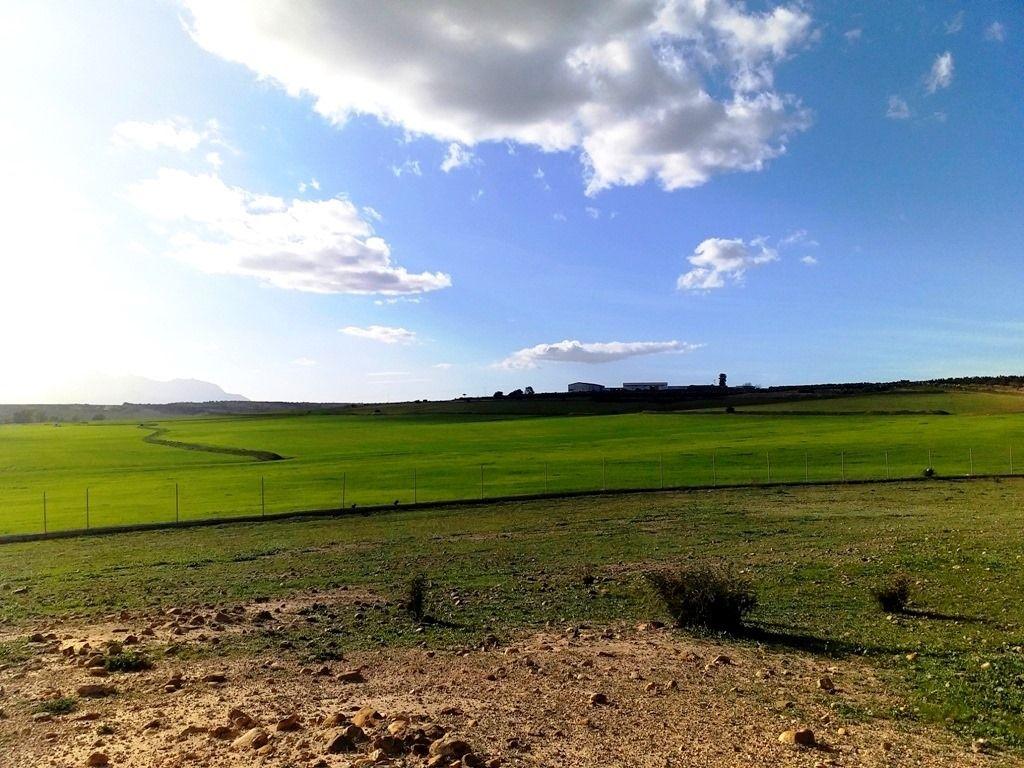 Un terrain av pour un projet agricole à la compagne d'hamammet