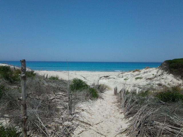 Nabeul terrain au bord de la plage rtiba