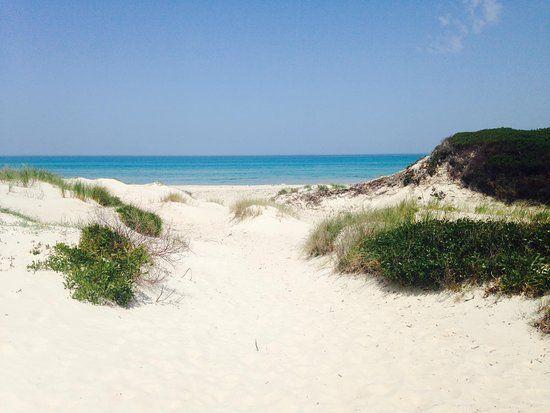 Terrain près de la plage à rtiba