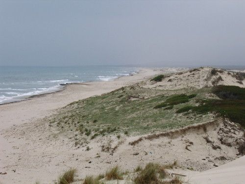 Rtiba terrain au bord de la plage à nabeul