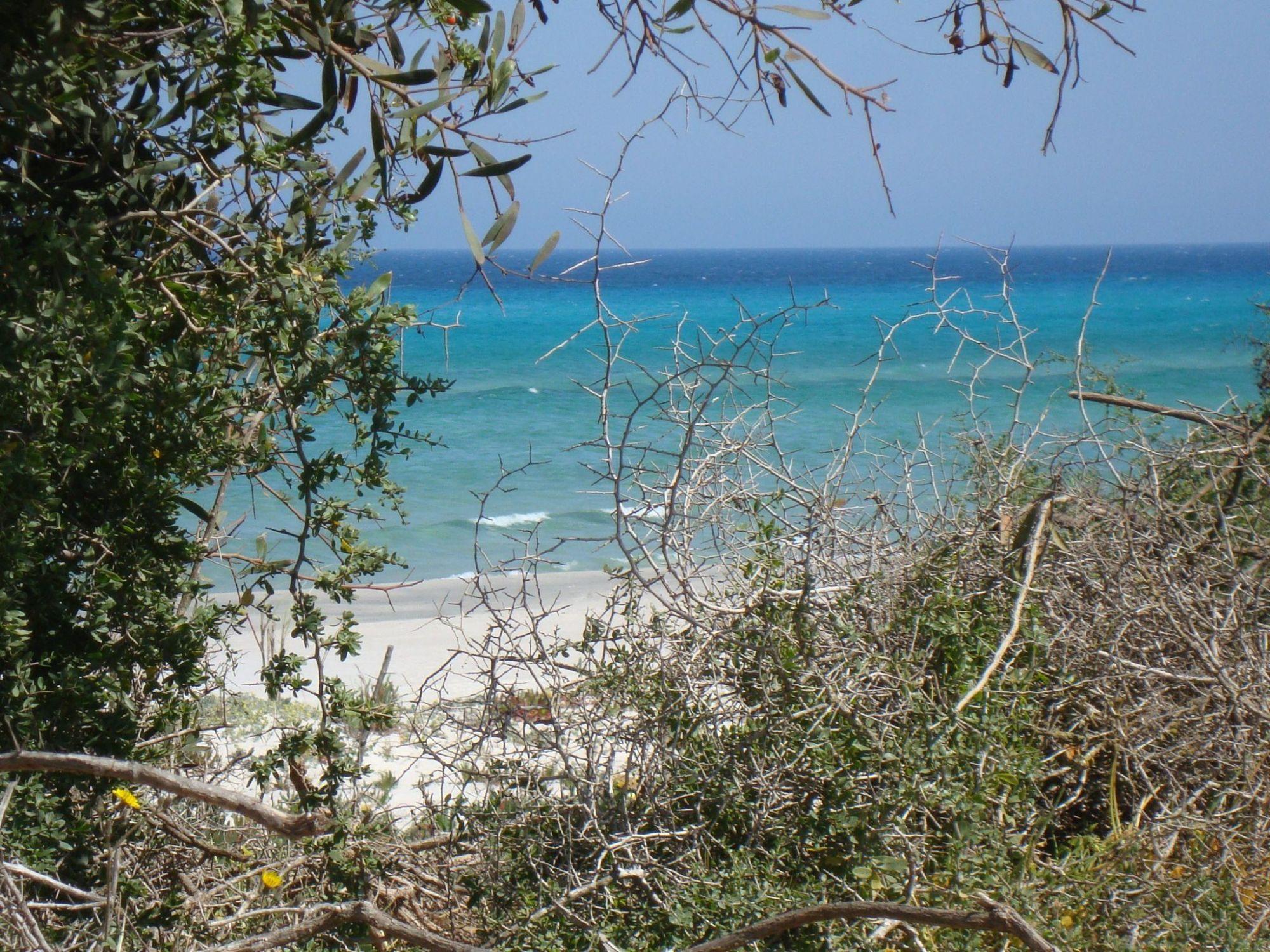 Terrain 01 ha au bord de la plage ezzahra à nabeul