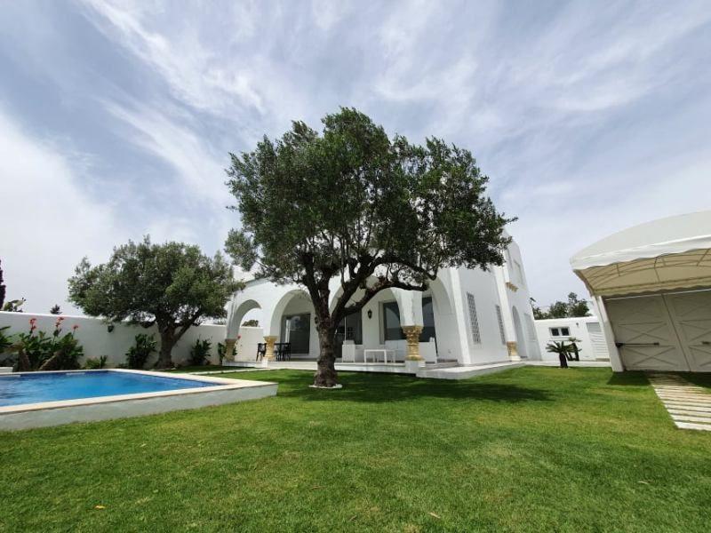 Dar mahmoudréf: location villa avec piscine