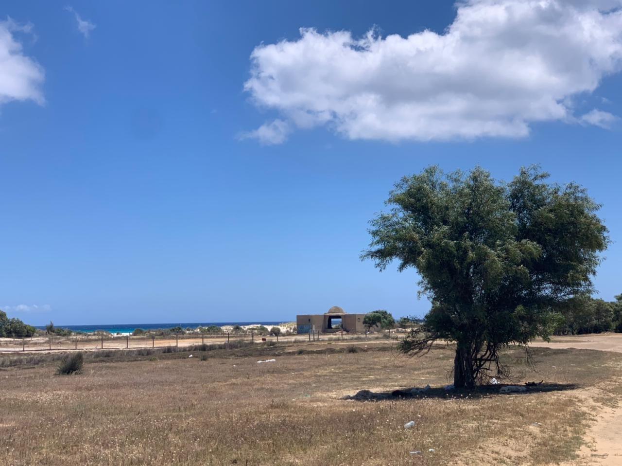 Terrain 500 kelibia mansoura