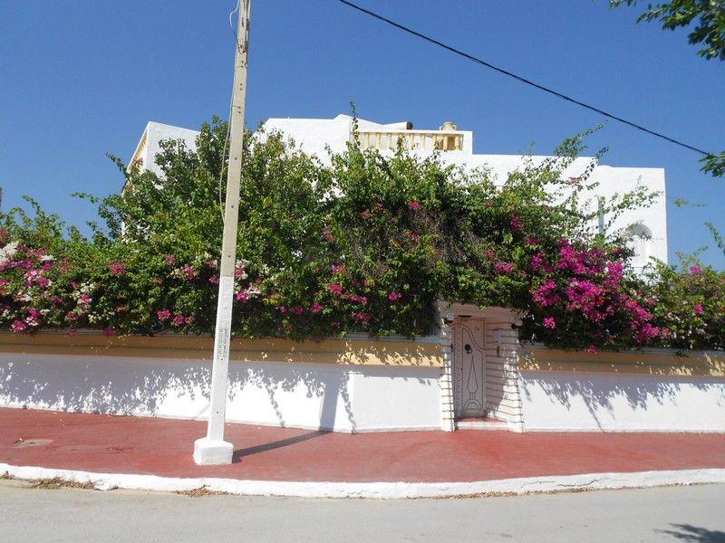 Av grande et belle villa meublée dans la zone sud de hammamet