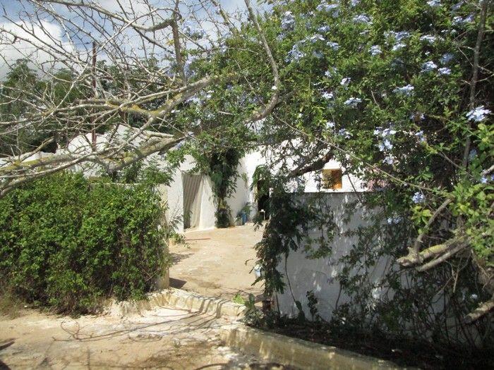 Urgent à ne pas rater une maison de campagne avec 600m