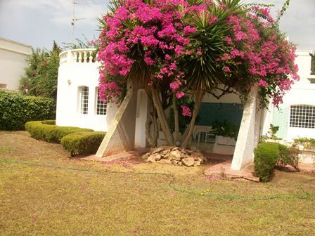Maison manara hammamet nord mimosa