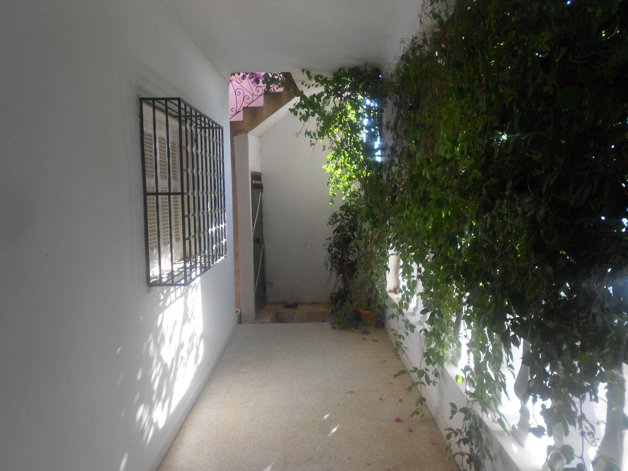 Av Belle Maison Avec Beau Jardin A Hammamet Nord Vente Maison A