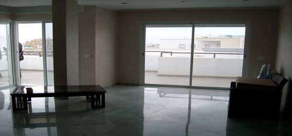 Appartement de charme avec une terrasse immense