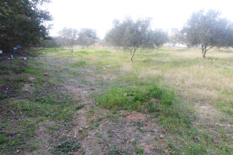 Avdre terrain proche de hammamet