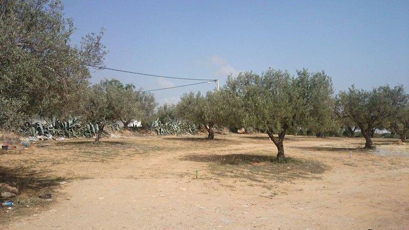Avdre un terrain dans un quartier résidentiel à hammamet nord