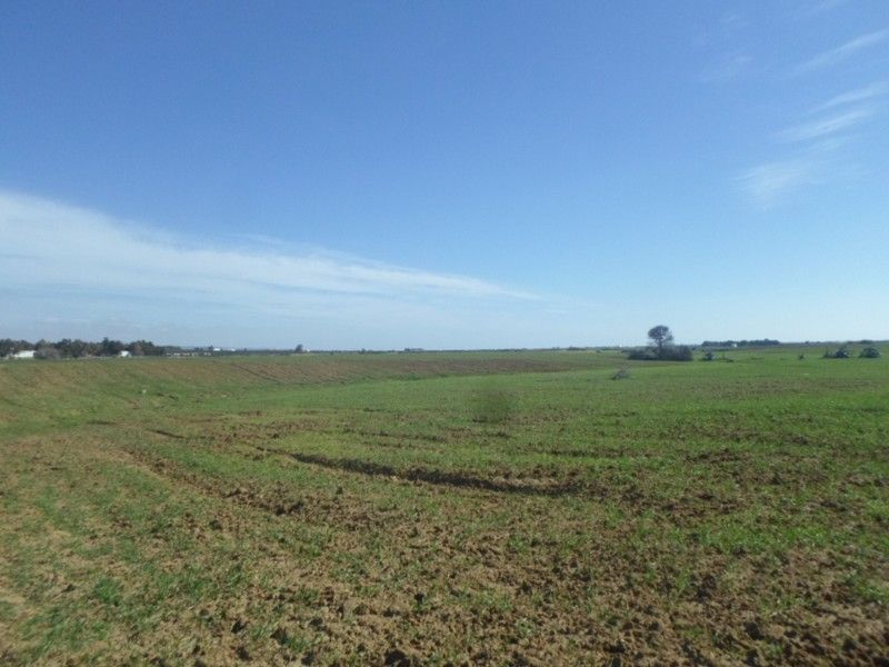 Avdre un grand lot de terrain à 5km de hammamet