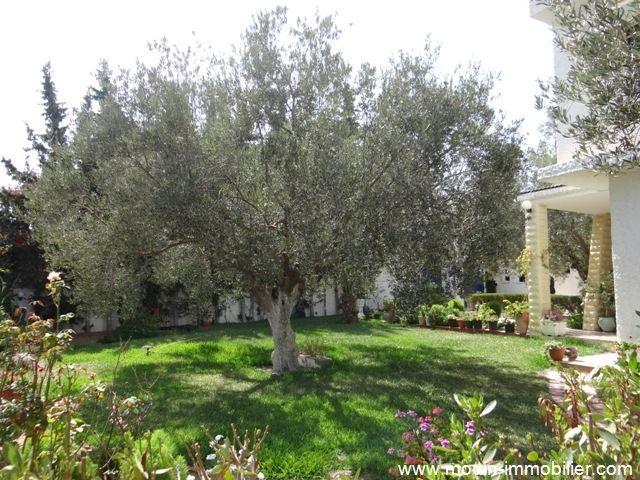 Villa eline a cité kharrouba hammamet