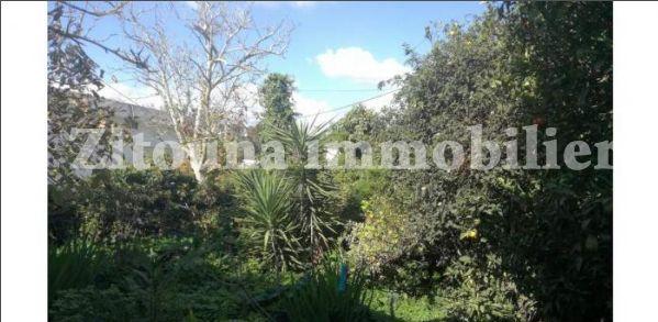 A vendre une villa à carthage avec vue panoramique 3642vv