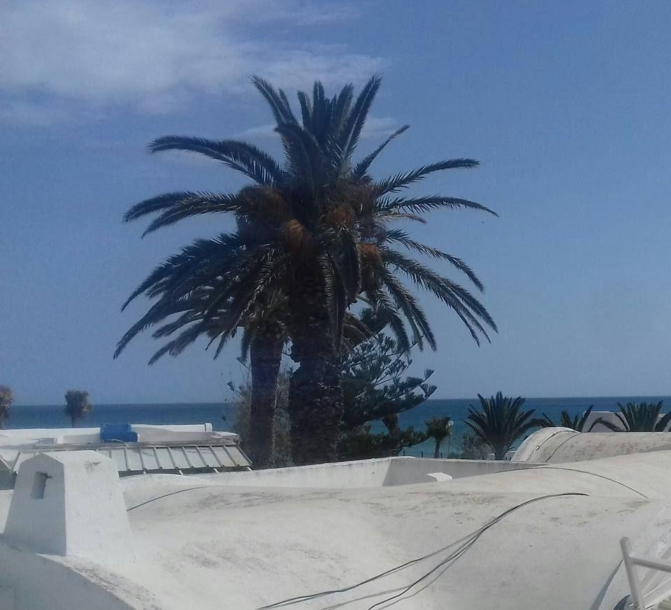 Villa plain pieds 2 ème ligne sur mer