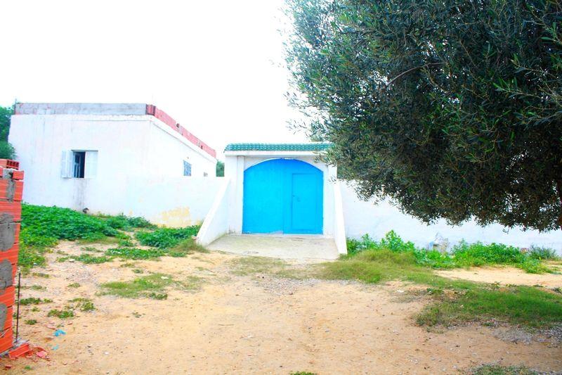Eux bungalows dans la campagne de hammamet
