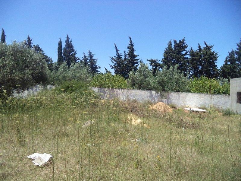 Terrain de 279 proche hammamet yasmnine